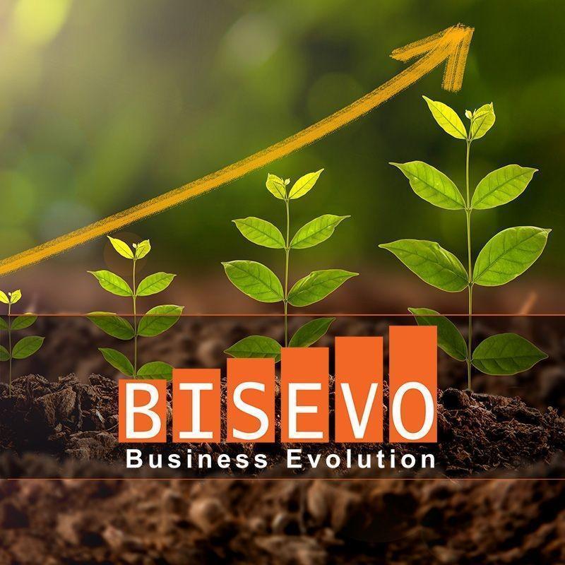 Bisevo Evolution får ny företagshemsida