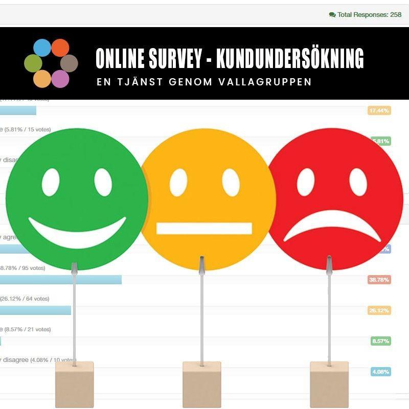 Hur kan man jobba med kundundersökningar Online - Survey