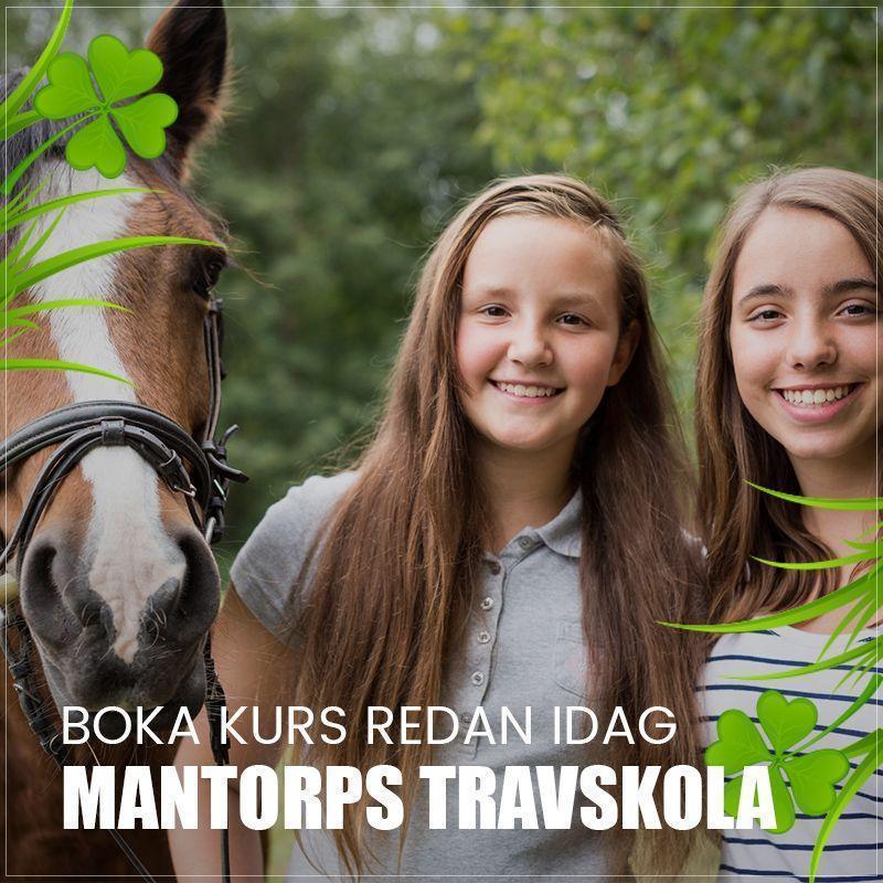 travskola-socialamedier