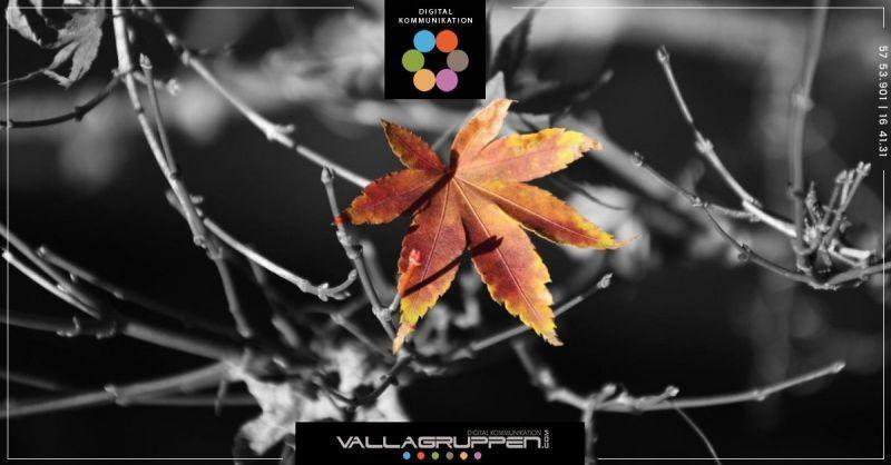 vallagruppen-webbyr-atttankapa-f_20181009-055243_1