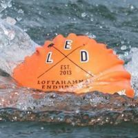 Vallagruppen sponsrar LED