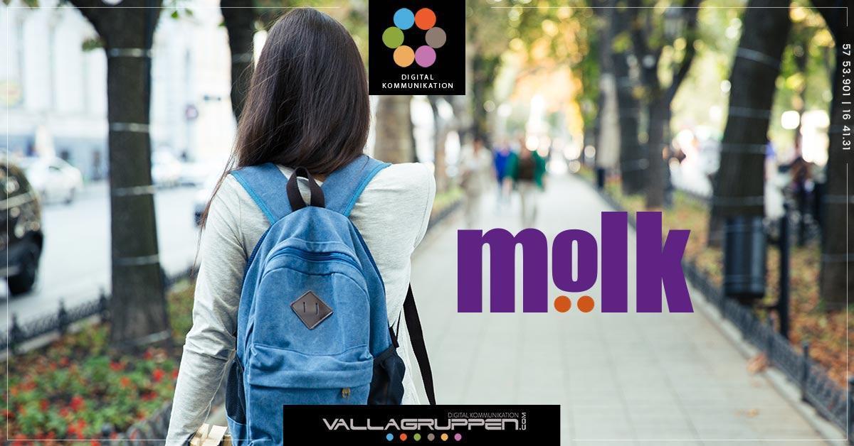 vallagruppen-molk-blogg